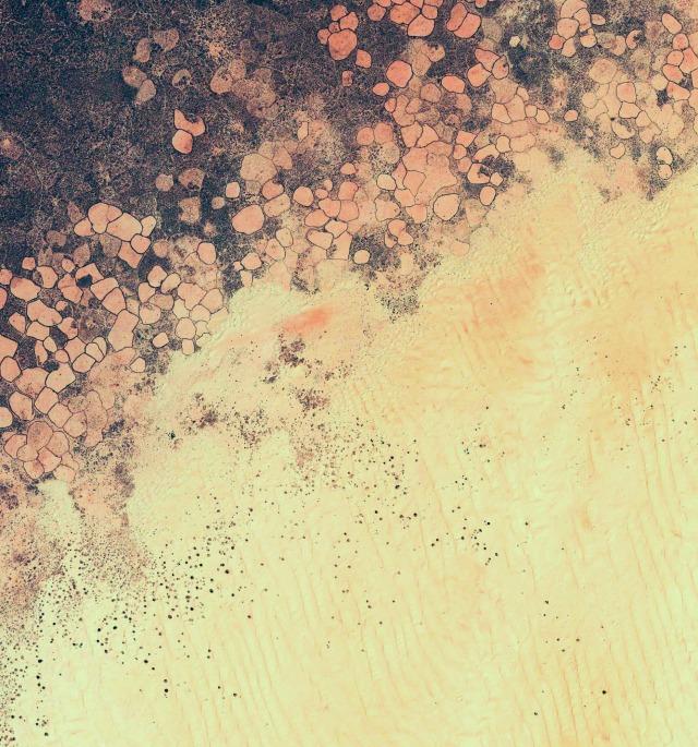 nexus2cee_lollipop-wallpaper-10