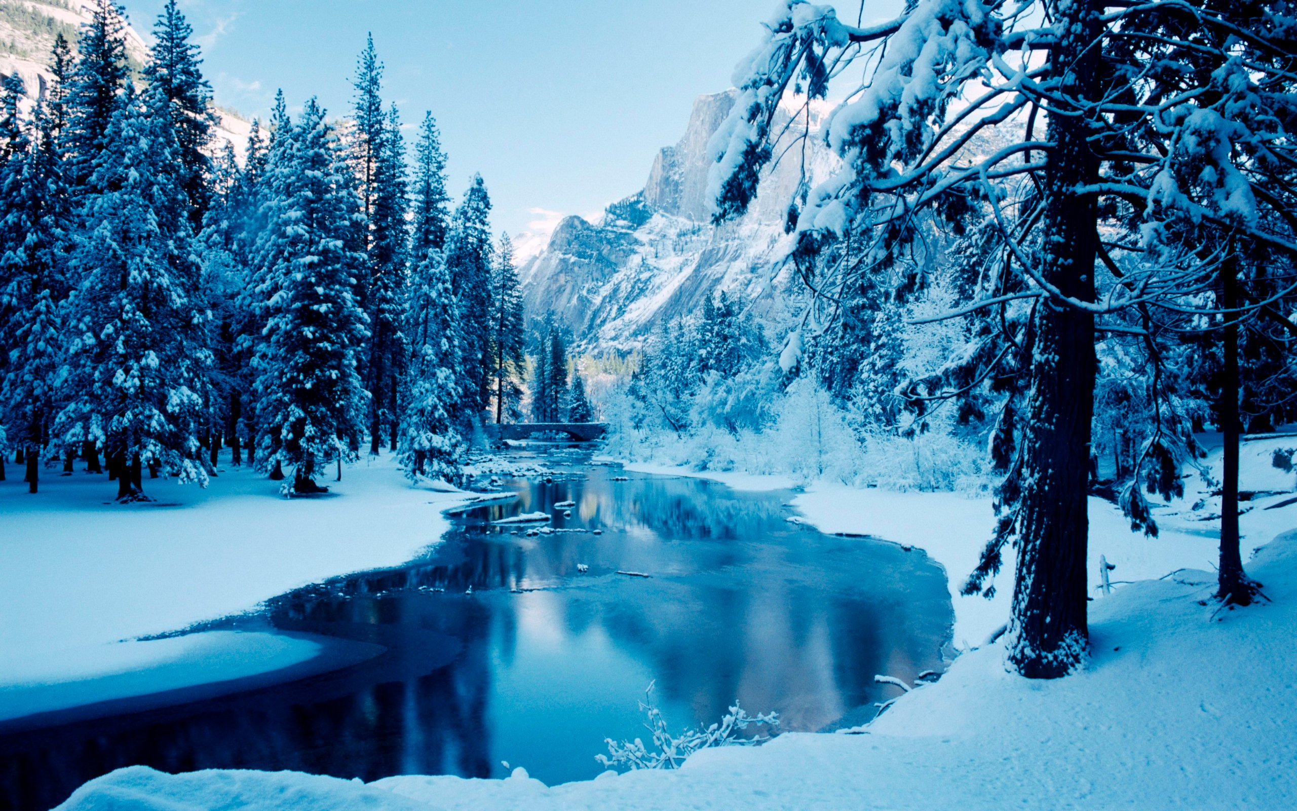 Winter wallpaper hd android