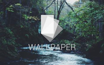 river woods wallpaper