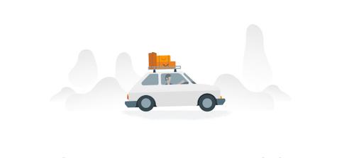google travel car