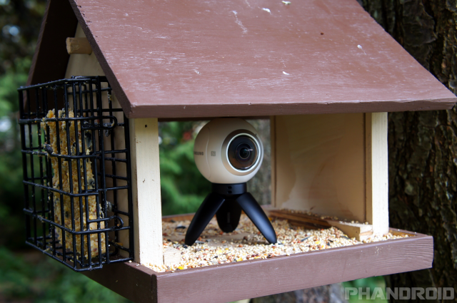 I put a 360-degree camera inside of a bird feeder [VIDEO]