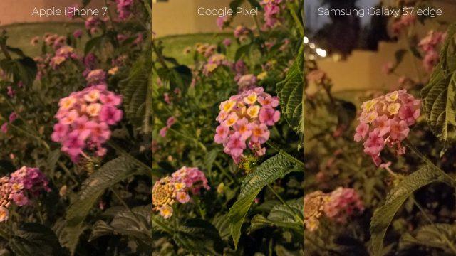 pixel-camera-versus-iphone7-galaxys7edge-night-flowers