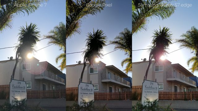pixel-camera-versus-iphone7-galaxys7edge-palm