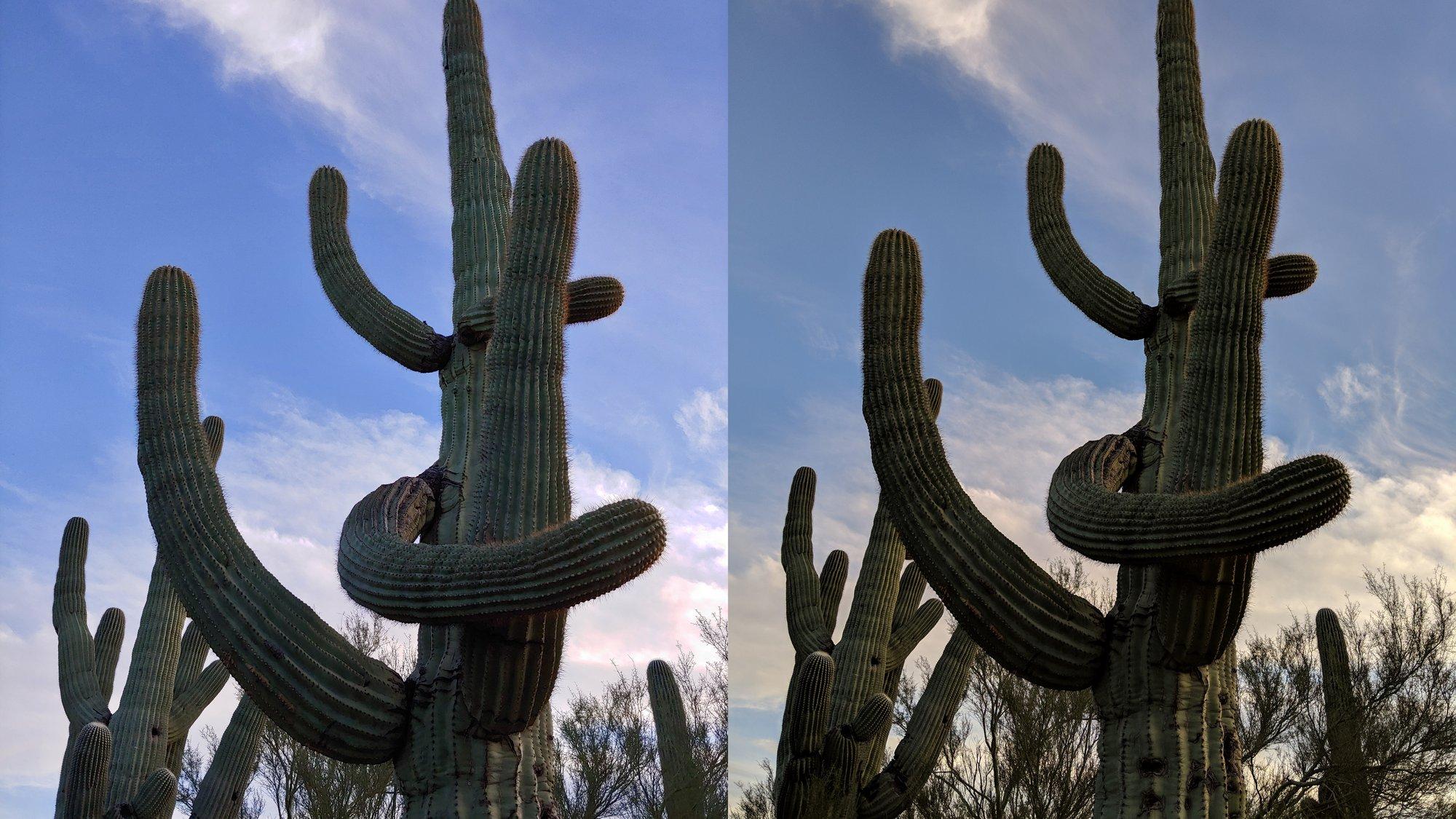 Pixel 3 versus LG G7: camera comparison