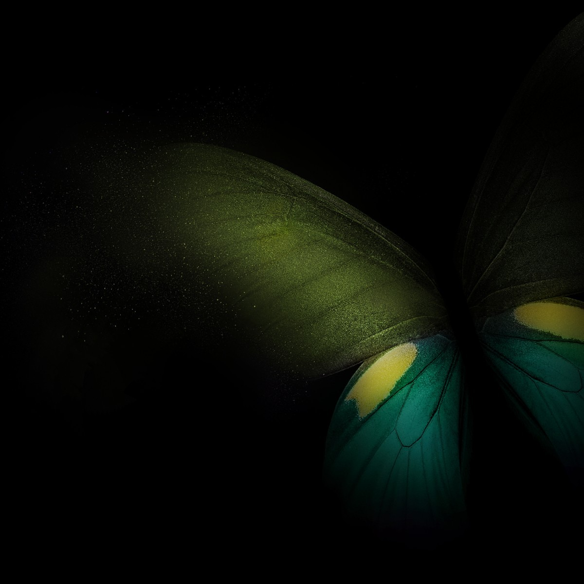 Customize Your Smartphone With The Samsung Galaxy Fold S Wallpapers